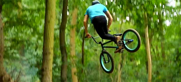 Wingham Woods Dave King edit