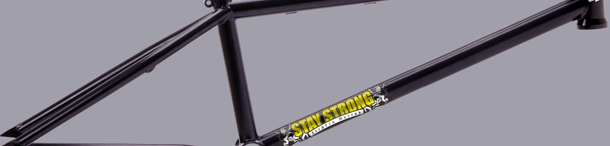 Federal Bikes / Stay Strong