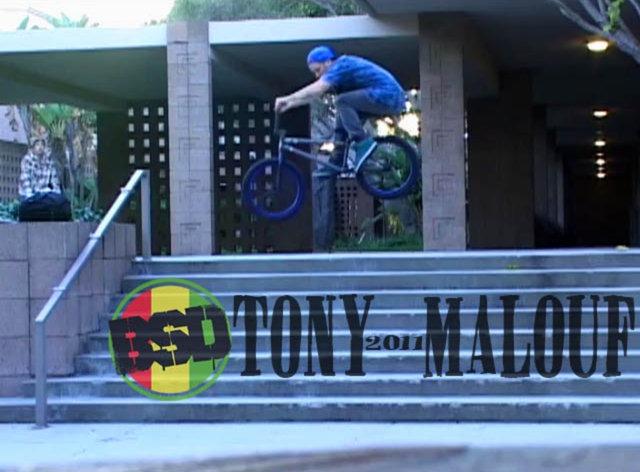 Tony Malouf - 2011