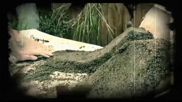 Flick Trix: Dirt Basics