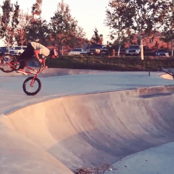 Daniel Sandoval Insta Clips