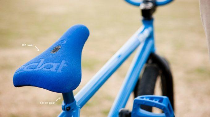 Shane Weston: Bike Check