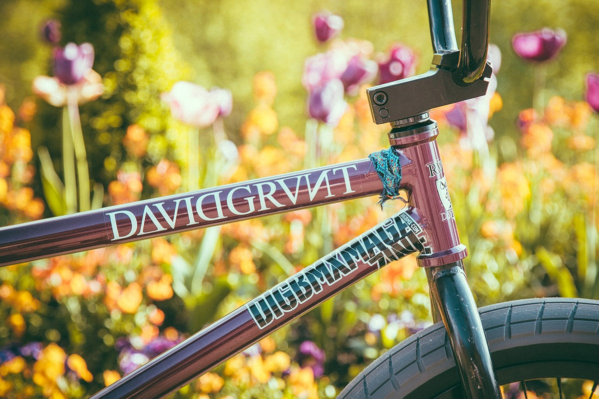 bsd-bike-dbg004-may14-006
