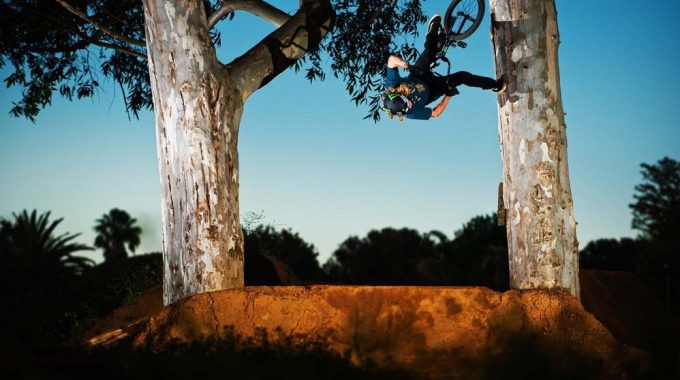 Mongoose - Greg Illingworth In SA Edit