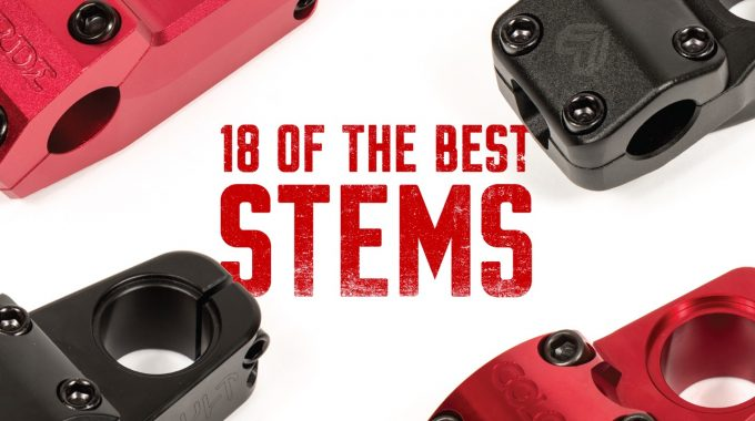 FRESH OUT THE BOX: 18 of Our Favourite Stems on The Market
